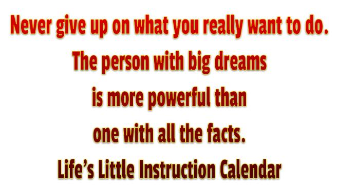 Determination Big Dreams Lifes Little