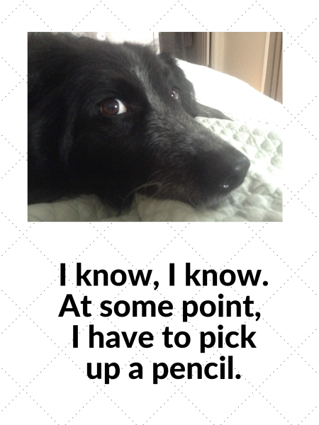 black dog writing poster 'At some point I have to pick up a pencil.'